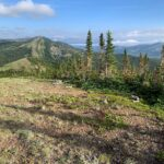 CDT: day 12, Badger Station to Cox Creek, 18 miles (Bob)
