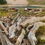 Teton Crest Trail Day 7: Ski Lake to Highway 22, 5 miles